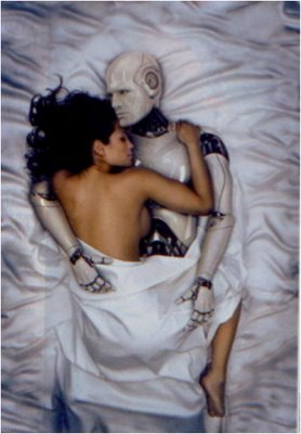 Robotic Prostitutes in the Near Future?