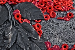 Lest We Forget: It's Remembrance Day!