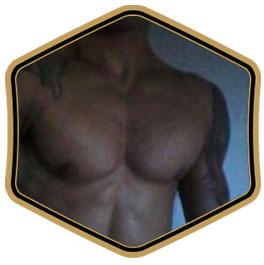 profile_Gogotatuado