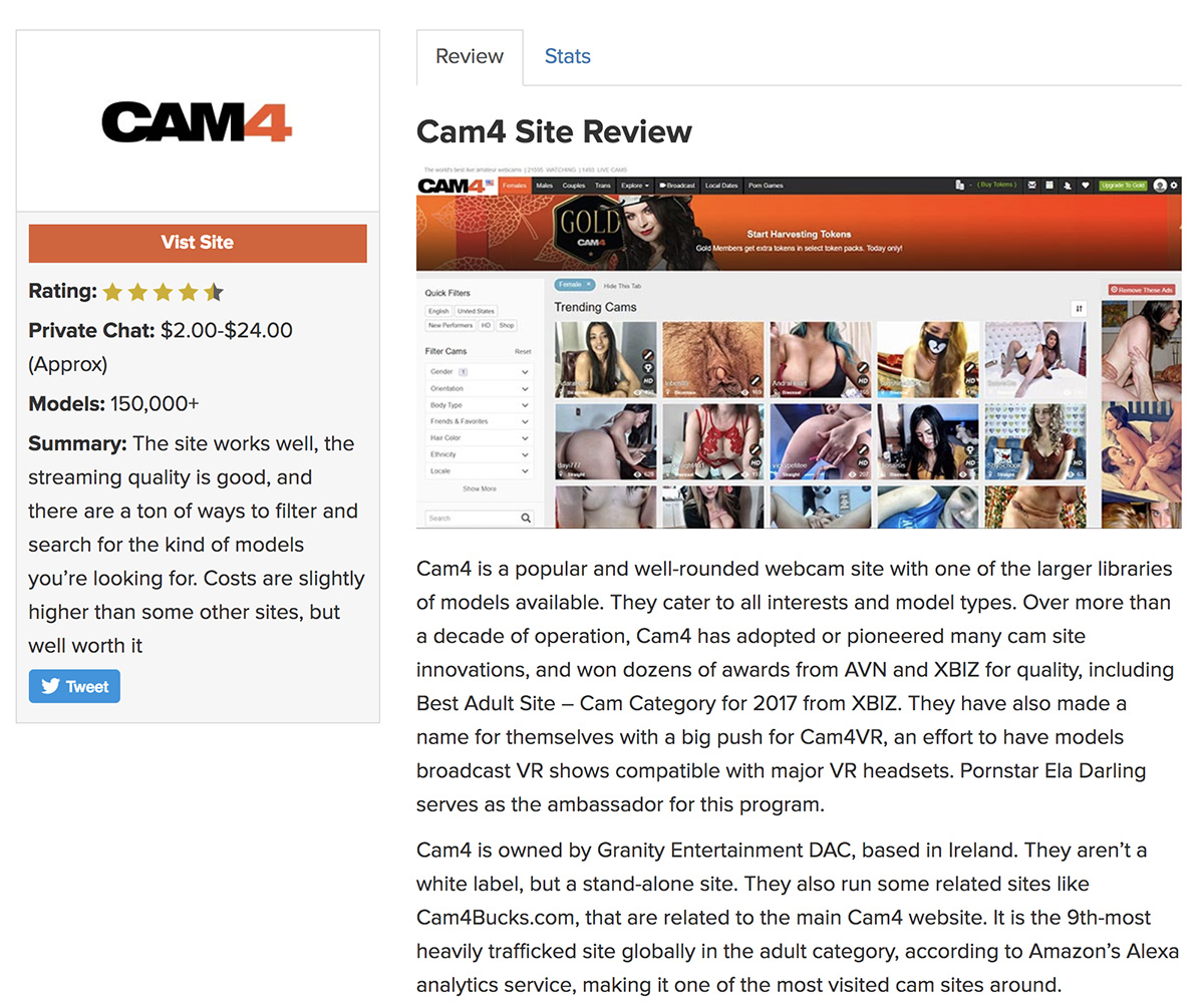 Adult website review